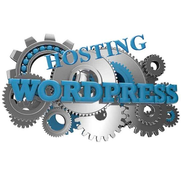 Wordpress Website Hosting - Web Pro NJ