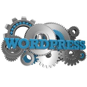 Wordpress Website Tune Up - Web Pro NJ