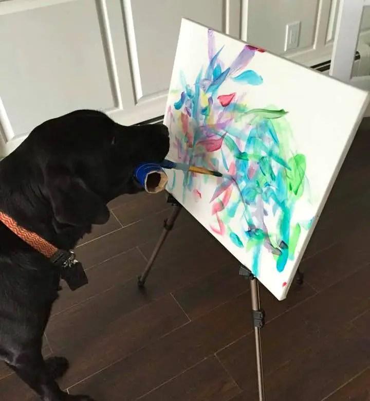 Malender Hund