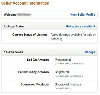 Amazon Seller Account Information