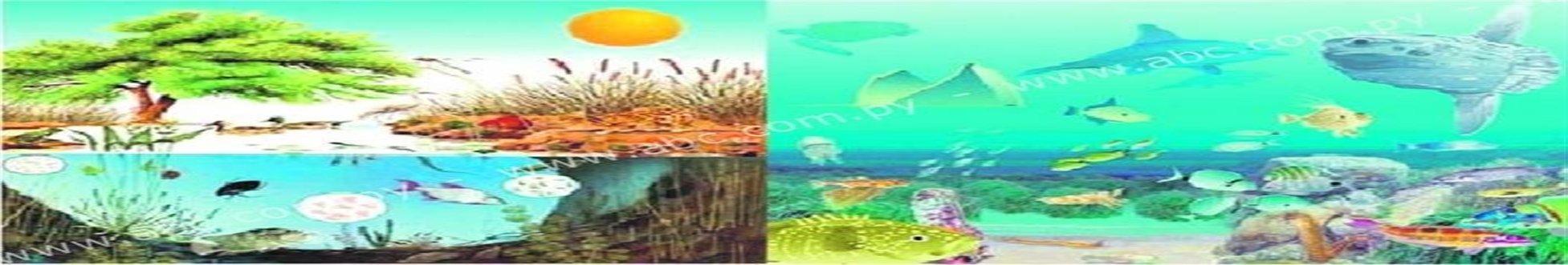 Ecosistemas De Aguas Dulces Y Aguas Saladas Webscolar