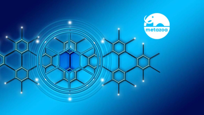 Metazoa Adds Impact Analysis Reporting To Its Salesforce Org Management Platform Snapshot