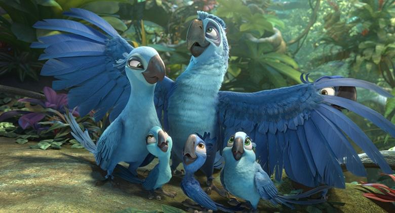 db4b3541167d9e819dfeaa9051ce0ab62d51d43d - 8 Bird Species Extinct In The Last 20 Years