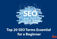 Top-20-SEO-Terms-Essential-for-a-Beginner