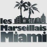les-marseillais-a-miami-w9-logo