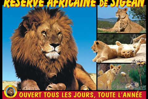Petite visite à la réserve africaine de Sigean ?