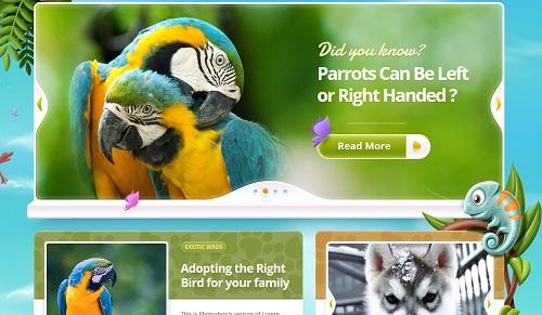 como iniciar blogs de animales