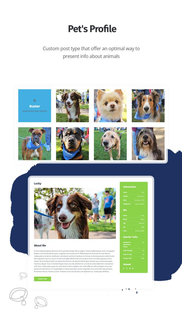 themes de wordpress clinica veterinaria