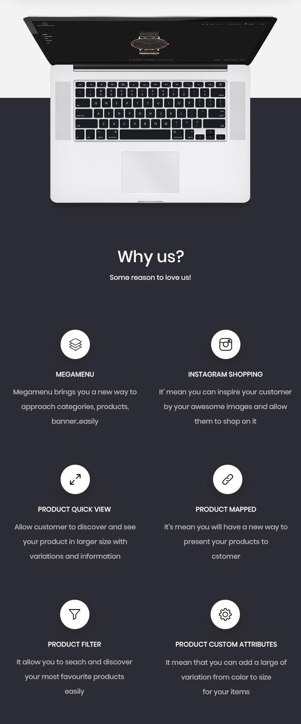 Característica Leo: potente módulo para la tienda en línea de Hitech y Digital.