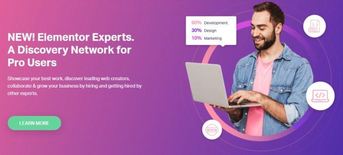 diseñador web elementor