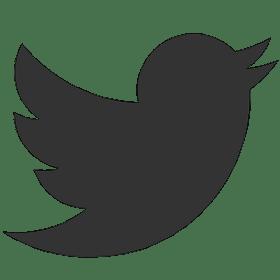 logo twitter blanc