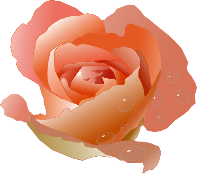 Free Rose Clipart Animations And Vectors