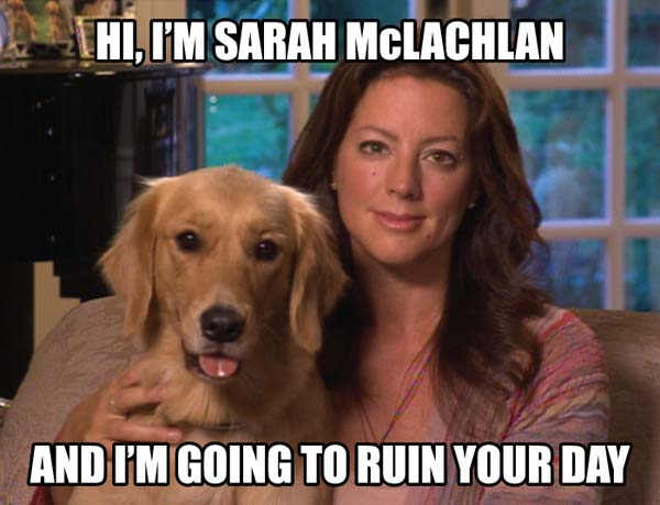 Image result for sarah mclachlan angel meme