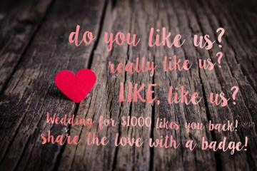 Share the Wedding for $1000 love!