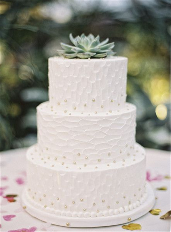 20  Succulent Wedding Cake Inspiration That Wow    13 simple pearl wedding cake with succulent