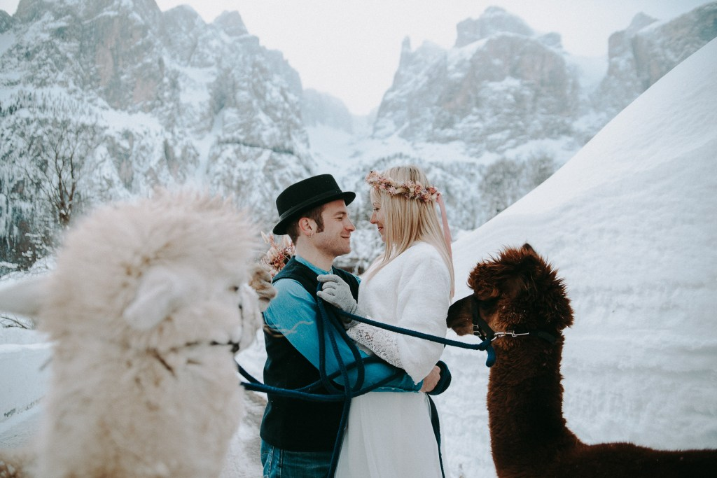 getting married with alpacas in winter colfosco alta badia