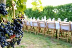 trouwen in italie wijngaard
