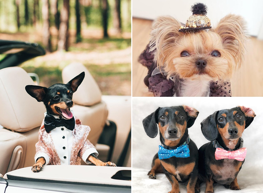 Glitter Bowties/Pet Accessories
