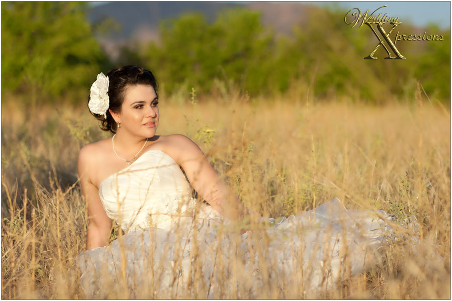 bride on floor of a yellow field in El Paso, TX