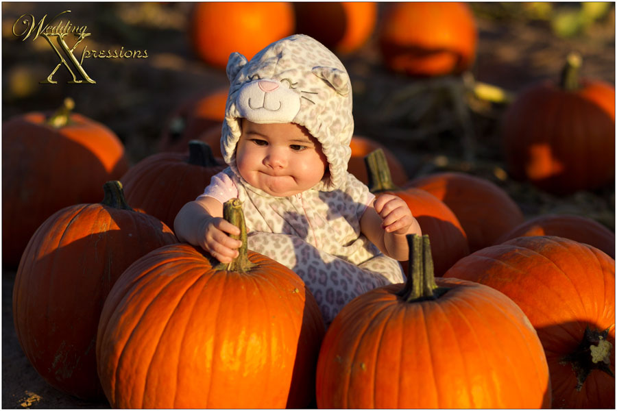baby photography with pumpkins