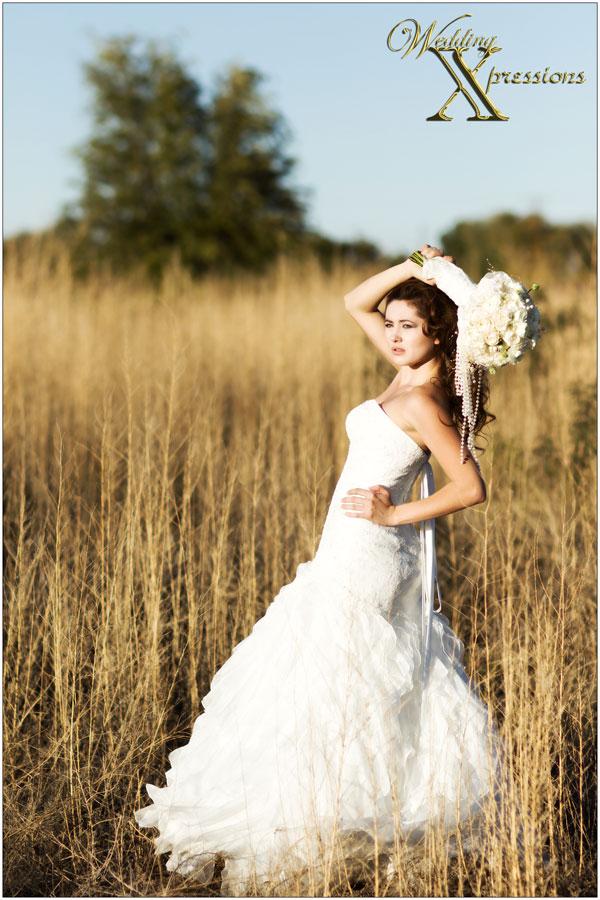 Wedding Dresses in El Paso Texas