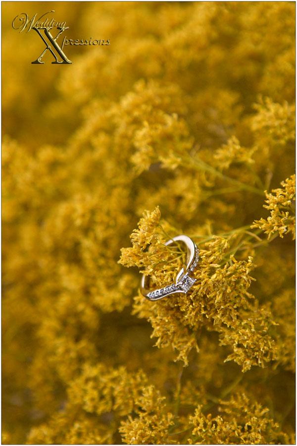 wedding engagement ring photography