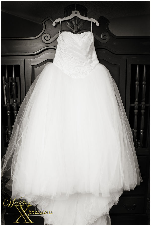 Vera Wang wedding dress in black and white