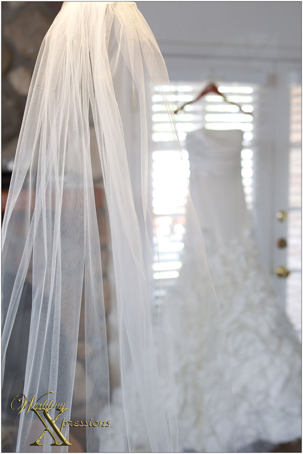 veil and wedding dress