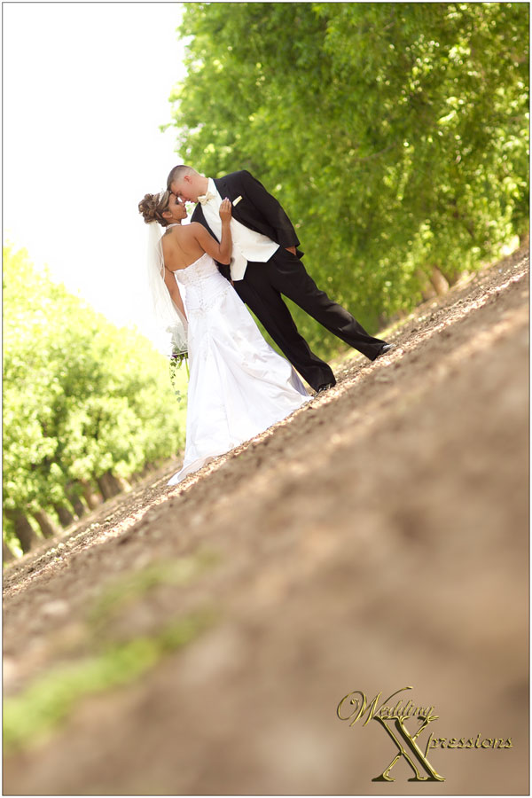 Wedding Xpressions Photography El Paso TX