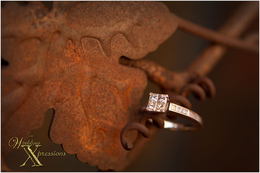 engagement ring on iron door