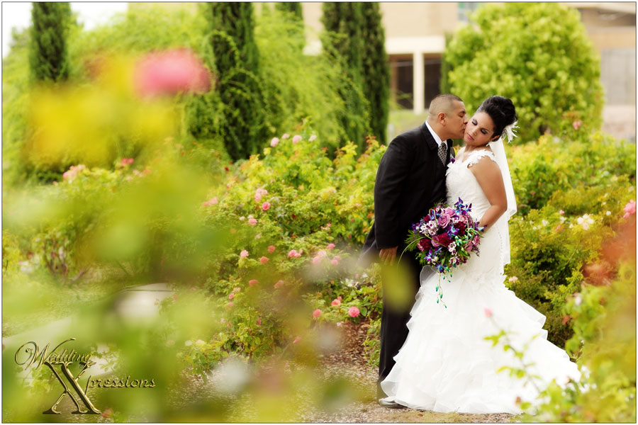 Wedding Xpressions Photography in El Paso, TX
