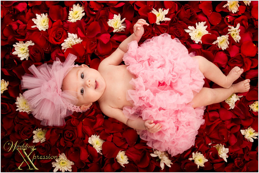 baby on bed of roses