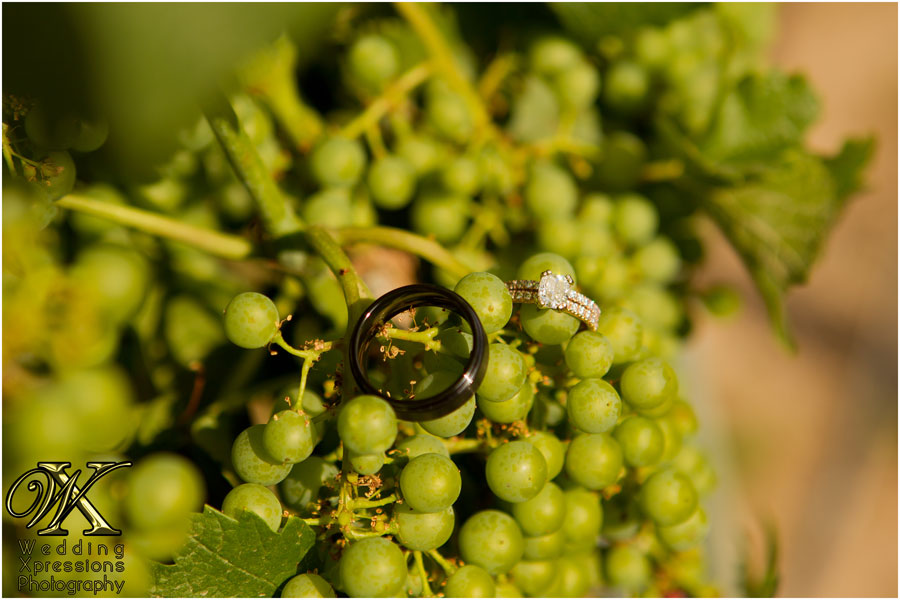wedding rings on grapes on vine
