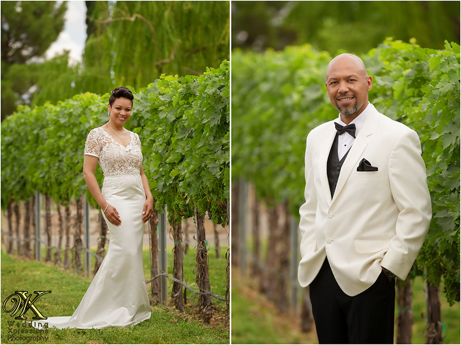 bride and groom at vineyards