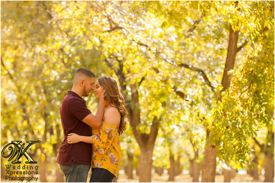 engagement session in New Mexico