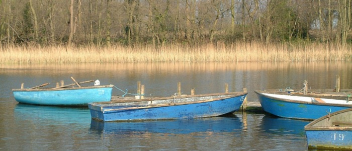 Boats on Filby Broad