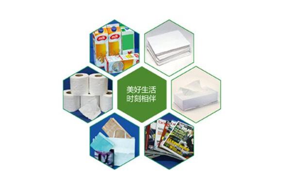 Guangzhou international Paper