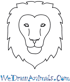 How To Draw A Lion Face