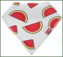 U.S. Bilby Watermelon Bandana Drool Bibs