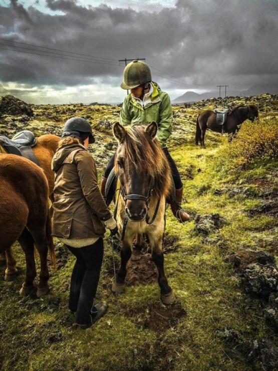 Horseback riding in West Iceland - How To Travel The Ring Road In 7 Days | Life With a View