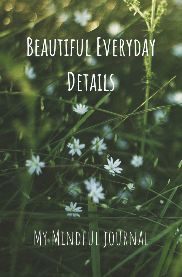 Cover for Beautiful Everyday Details My Mindful Journal