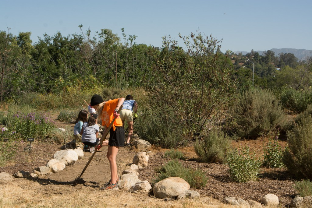 Girl scouts clear paths