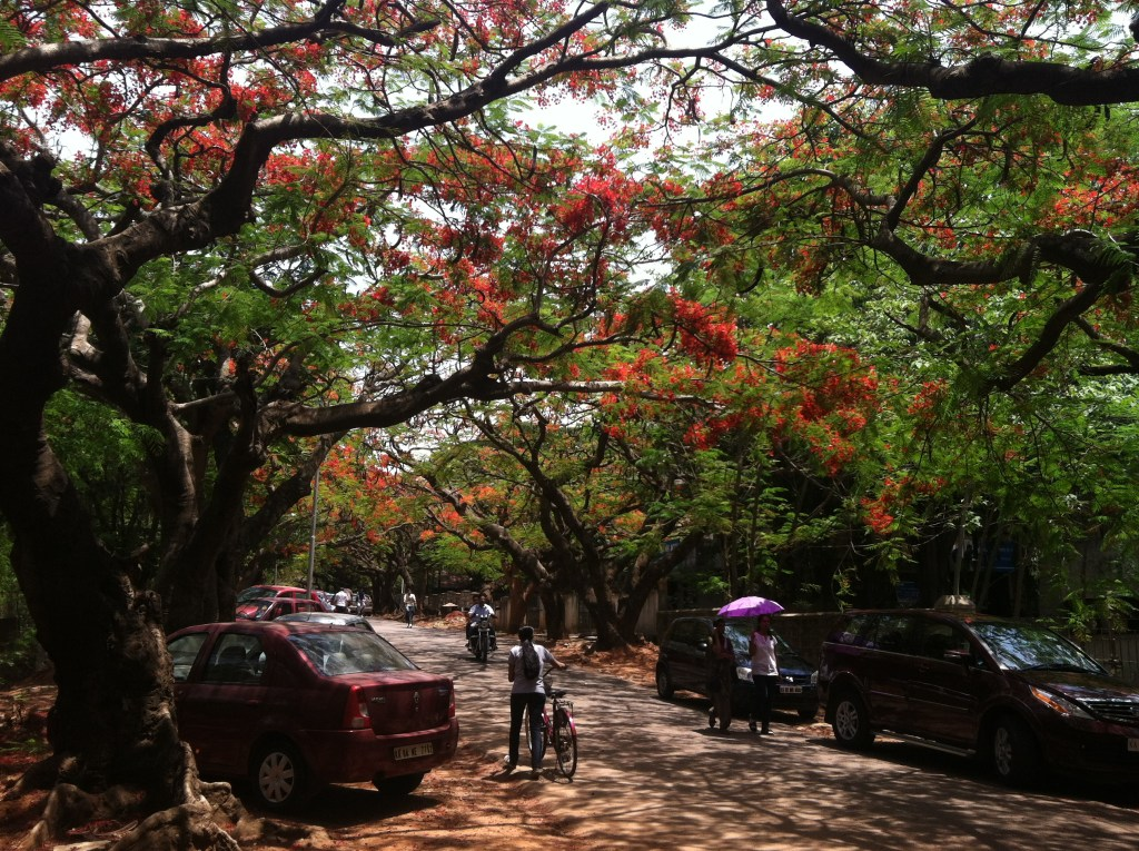 IIS, Bangalore