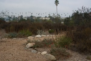 South Pasadena nature park
