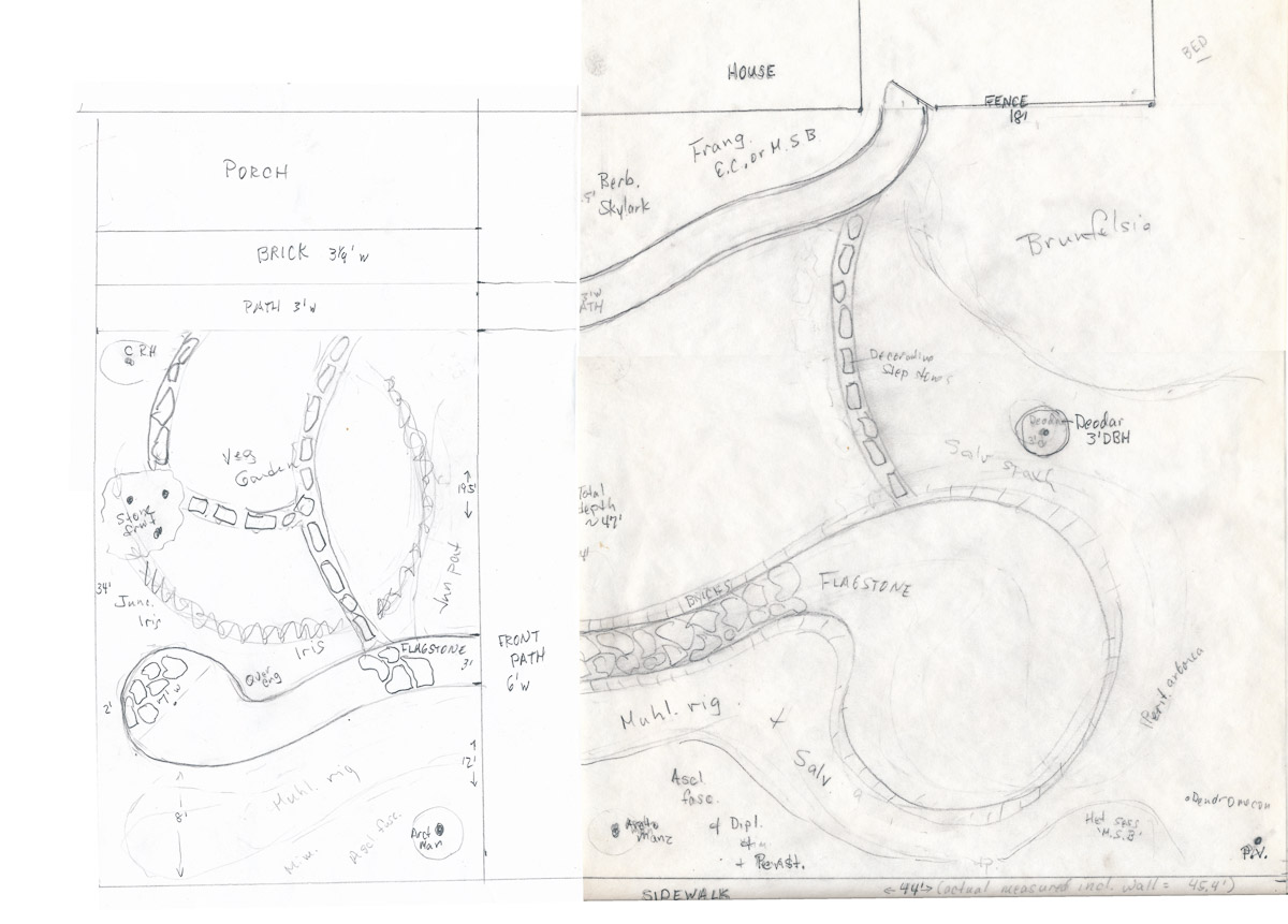 Plan for front yard
