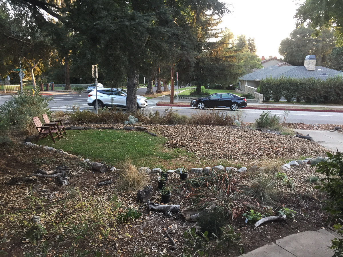 Losing the lawn in front