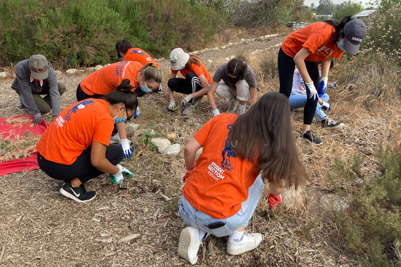 students volunteer at the park