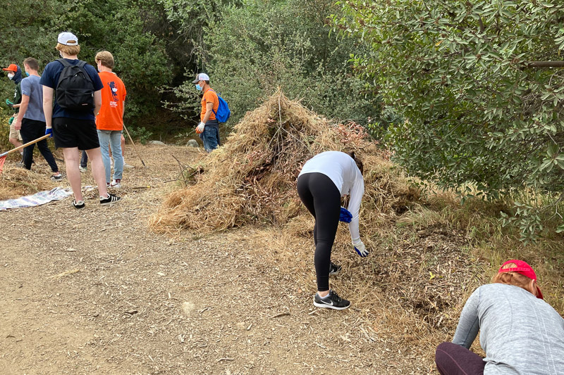 Students clear dry vegetation