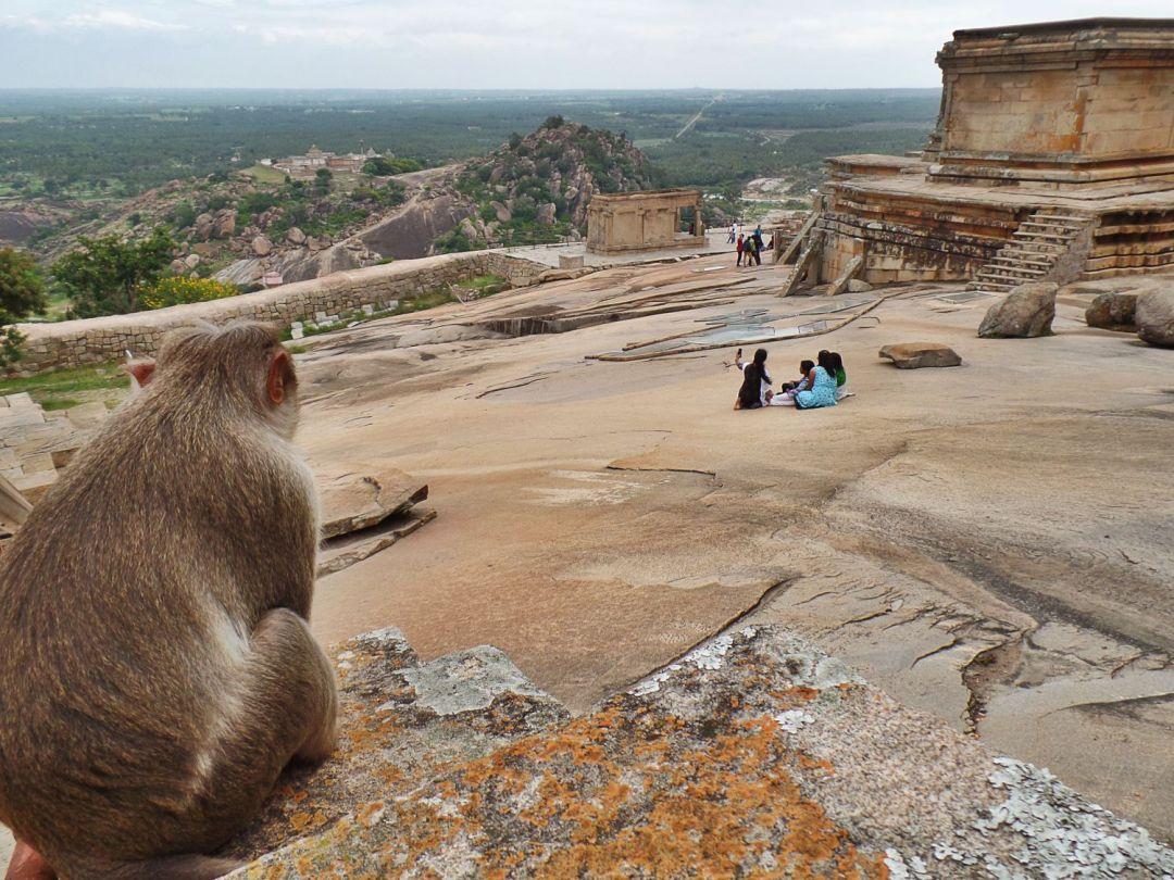 Hoysala Temple Trail