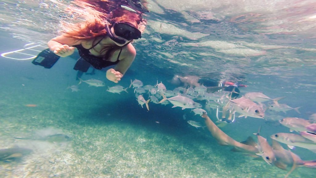 Me Snorkelling in Caye Caulker